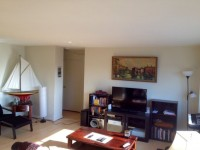 $1200 / 1br - 889ft2 - GREAT CENTER CITY APARTMENT