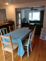 August sublet - 1 bedroom in 3-bed, 1.75 bath duplex; easy access to red and green lines