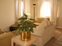 Furnished Room in 5 ba/2 bdrm Decatur House, all util incl.