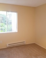 Private Room Available in 2bd Apartment!