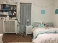 Furnished sublet mid-June to mid-August