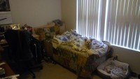 1bedroom (115ft2) 1 bathroom - Lease Takeover for Two Months in Greystone Apartments