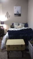 Rent beautiful student apartment right across from USF campus!